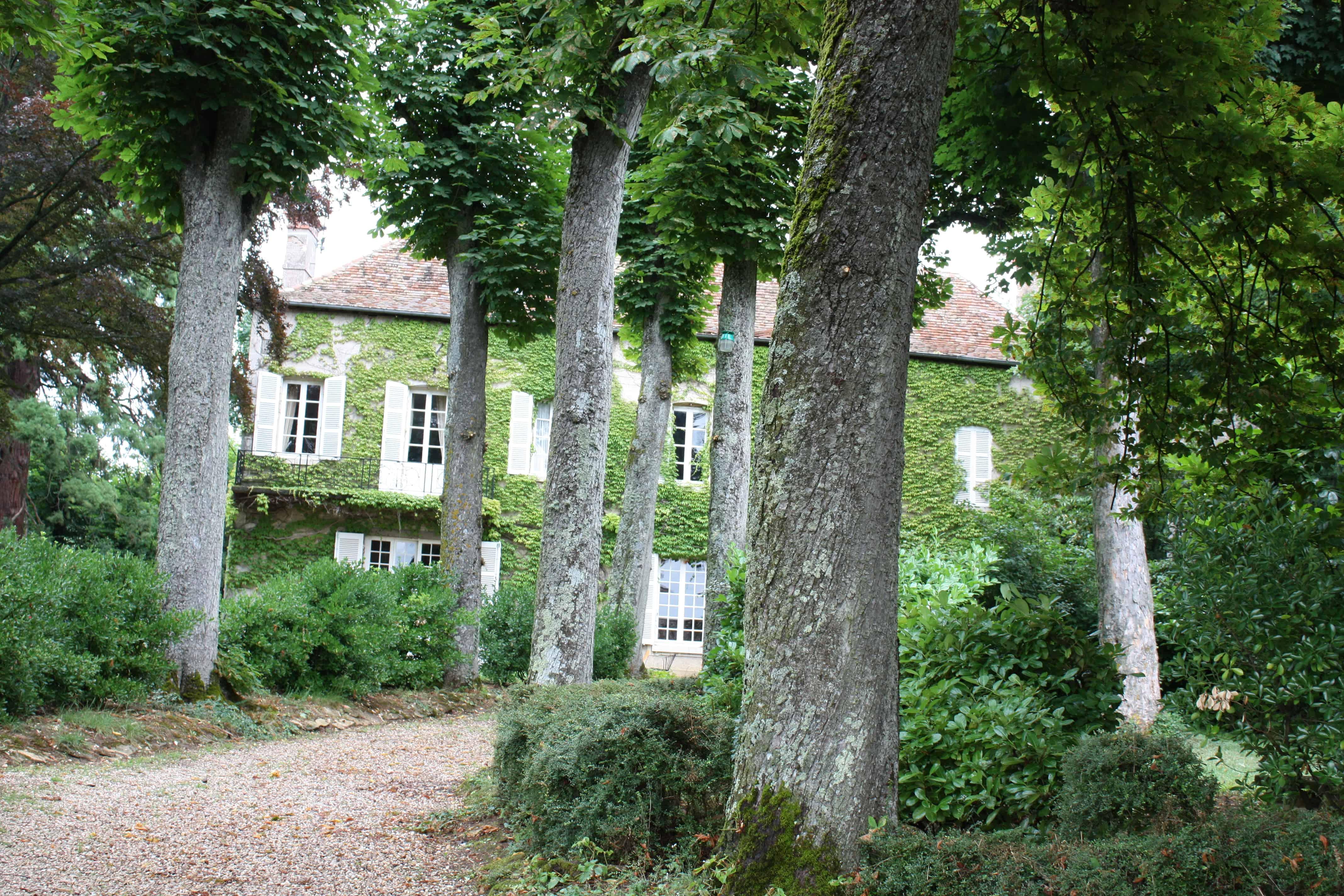 Burgundy: Comte Senard in Aloxe Corton 1