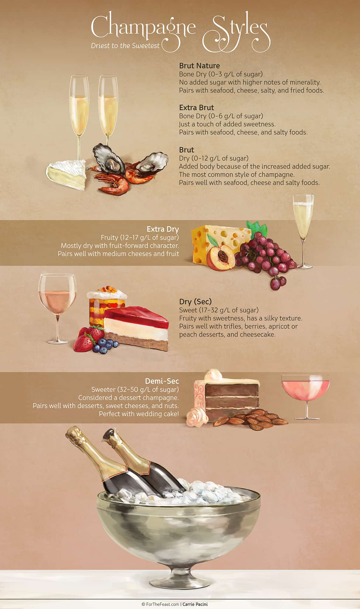 A Guide to Champagnes